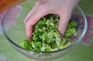 как сделать салат из капусты огурцов и помидоров