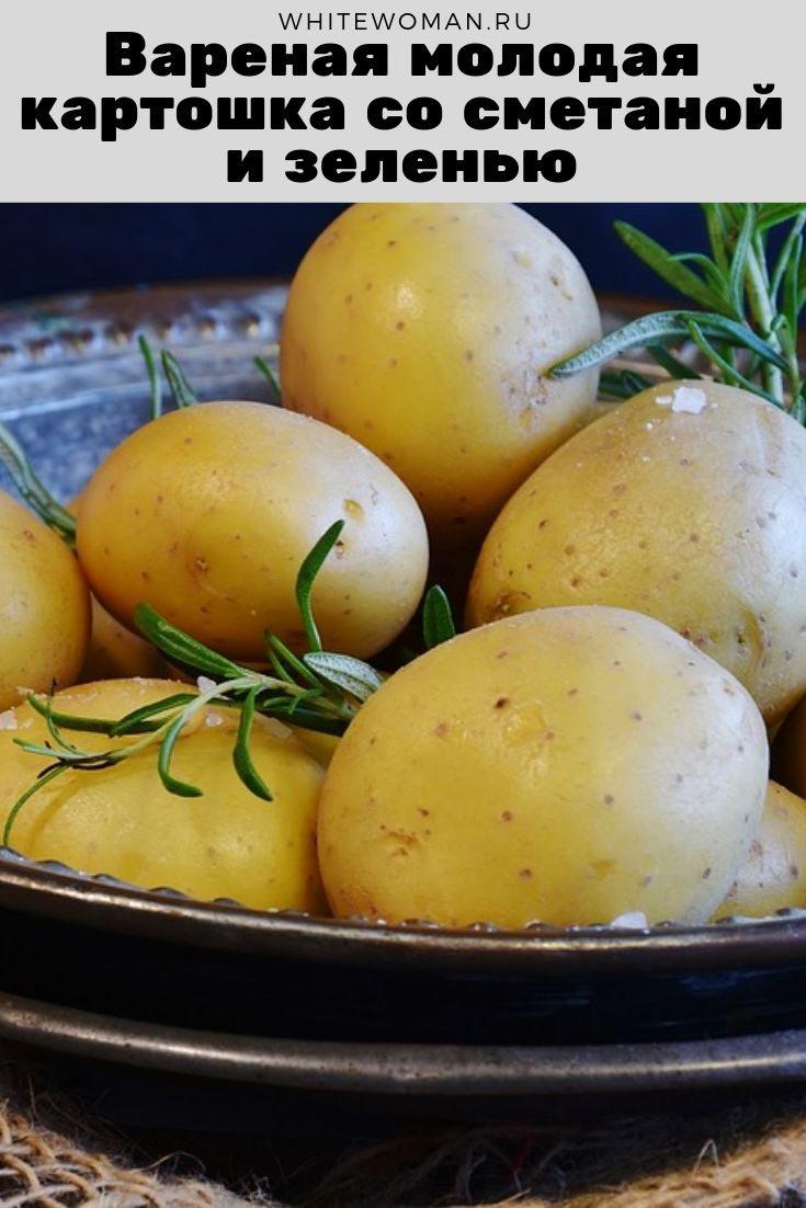 Рецепт вареной молодой картошки со сметаной и зеленью
